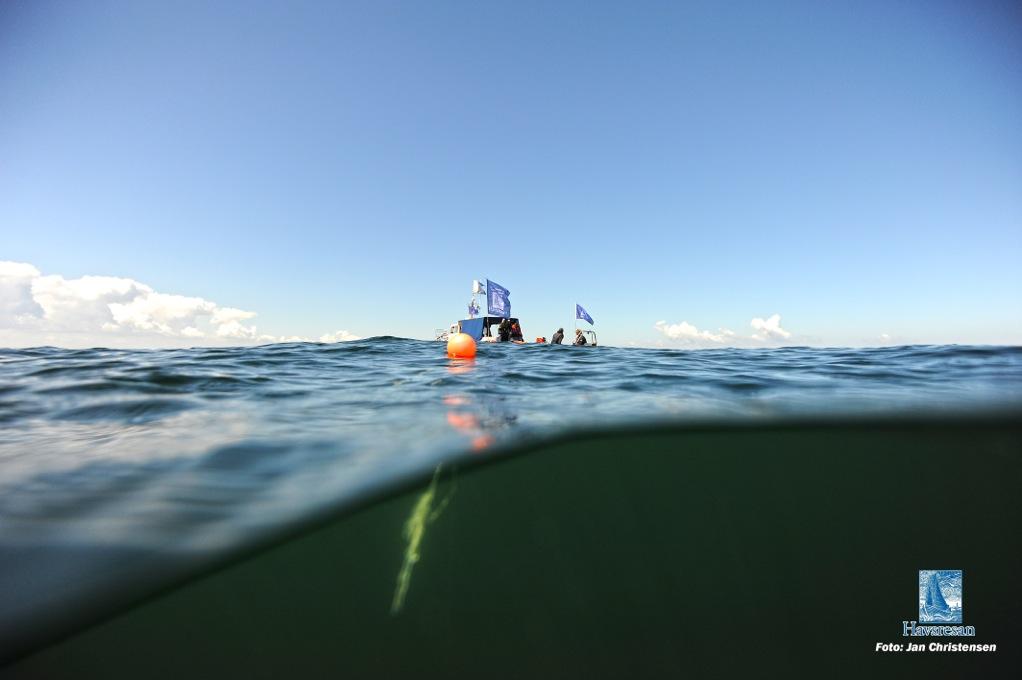 Undine med dykare på Halifaxen